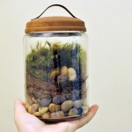 Mossy terrariums, mini parcels, and holiday festivities